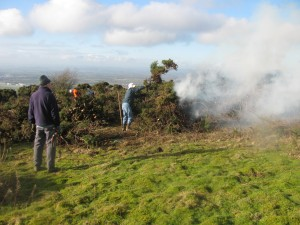Gorse Bonfire at the Masts Reserve