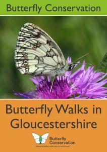 Butterfly Walks front cover