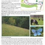 Butterfly Walk - Rough Bank