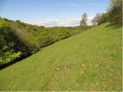 Grassland slope view